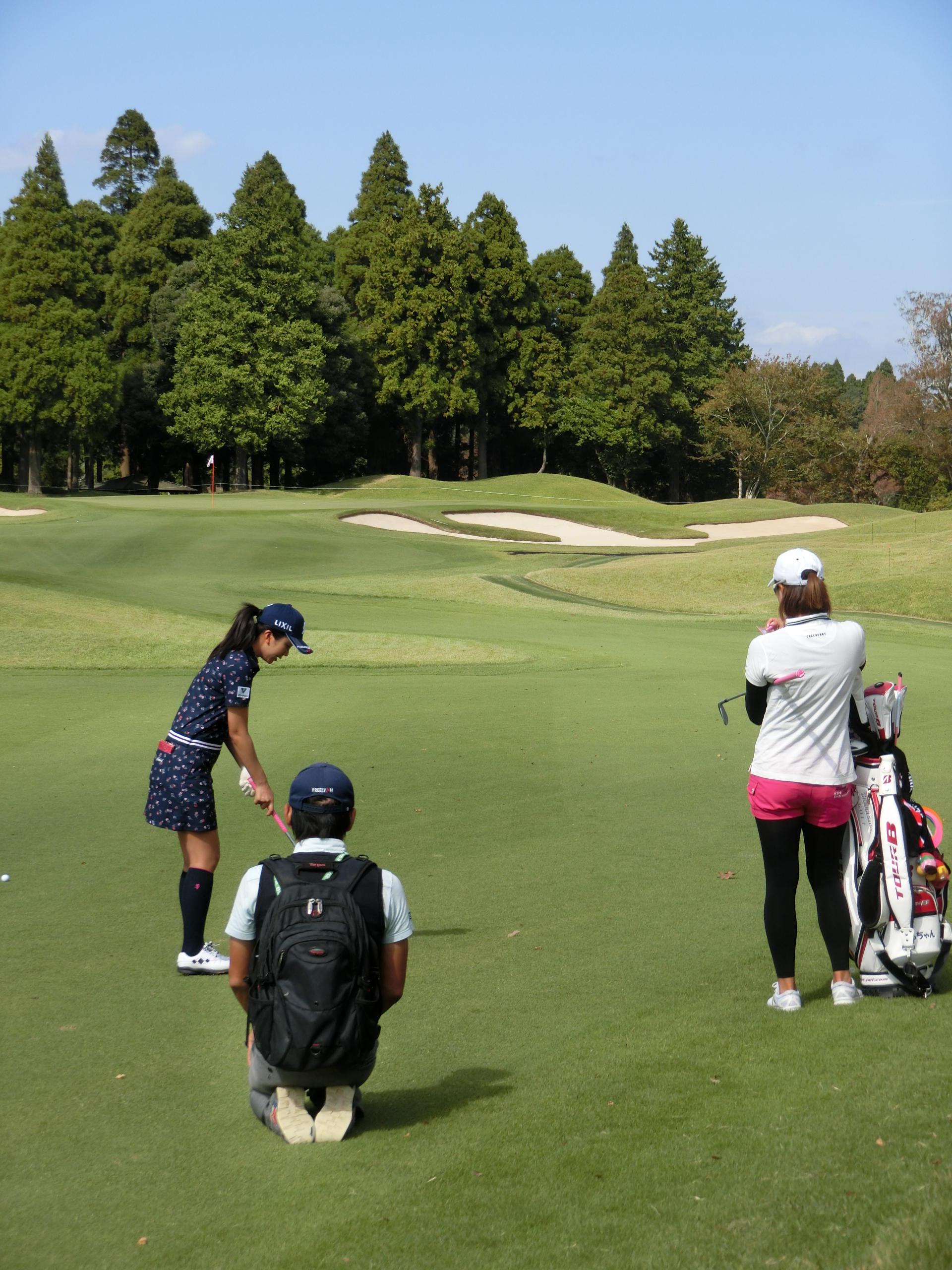 http://www.bs-golf.com/pro/11k.JPG