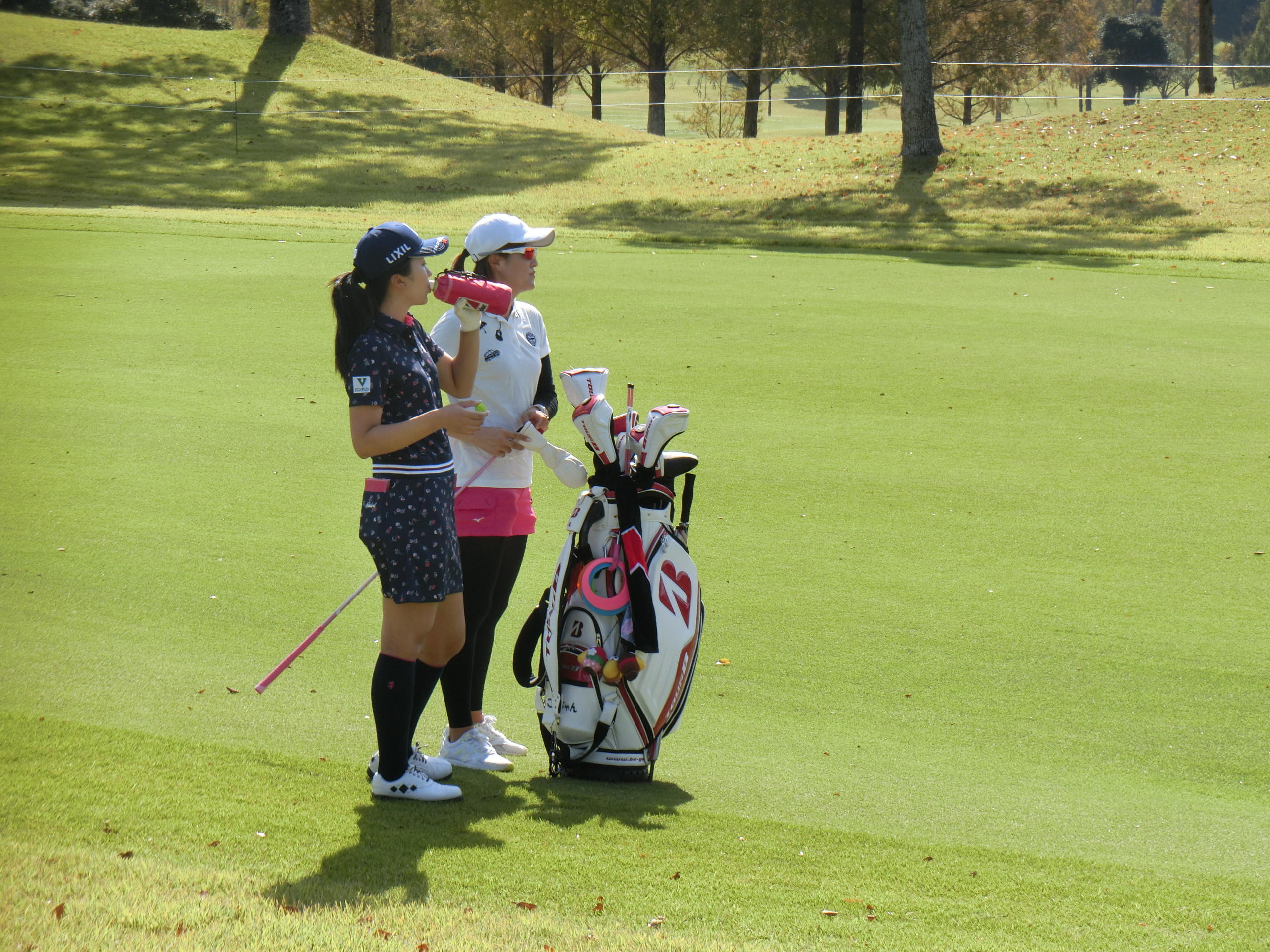 http://www.bs-golf.com/pro/12d.JPG