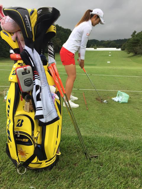 http://www.bs-golf.com/pro/14.jpg