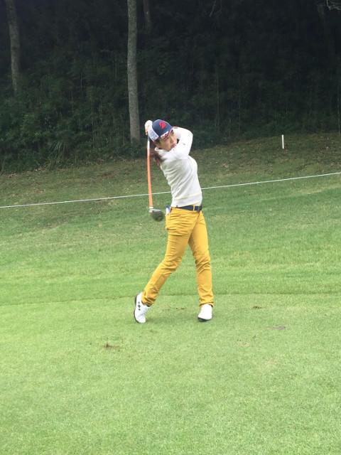 http://www.bs-golf.com/pro/18.jpg