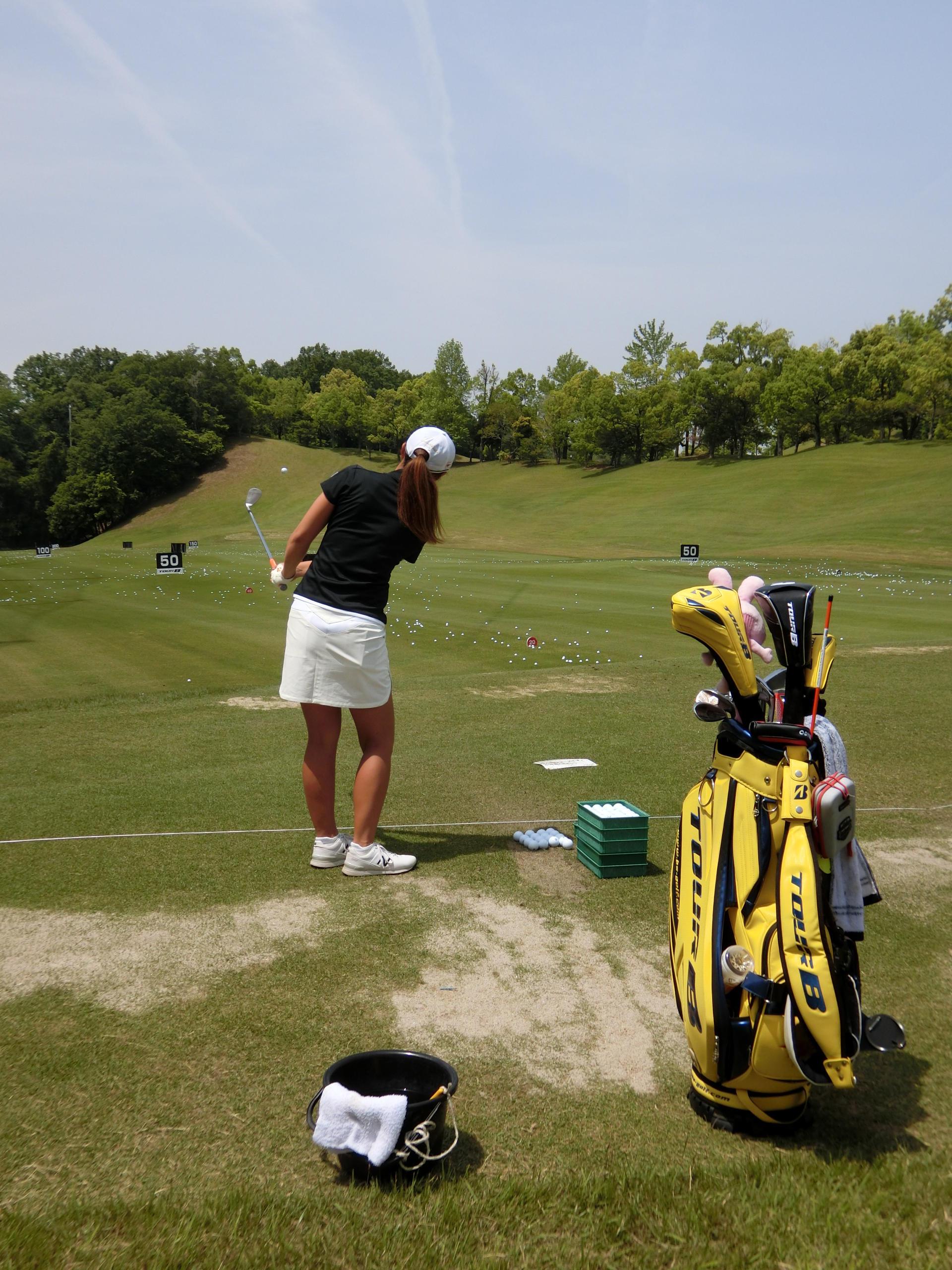 http://www.bs-golf.com/pro/5e086e8a5e2230401ae9de0b60134653b0b0a8e3.JPG